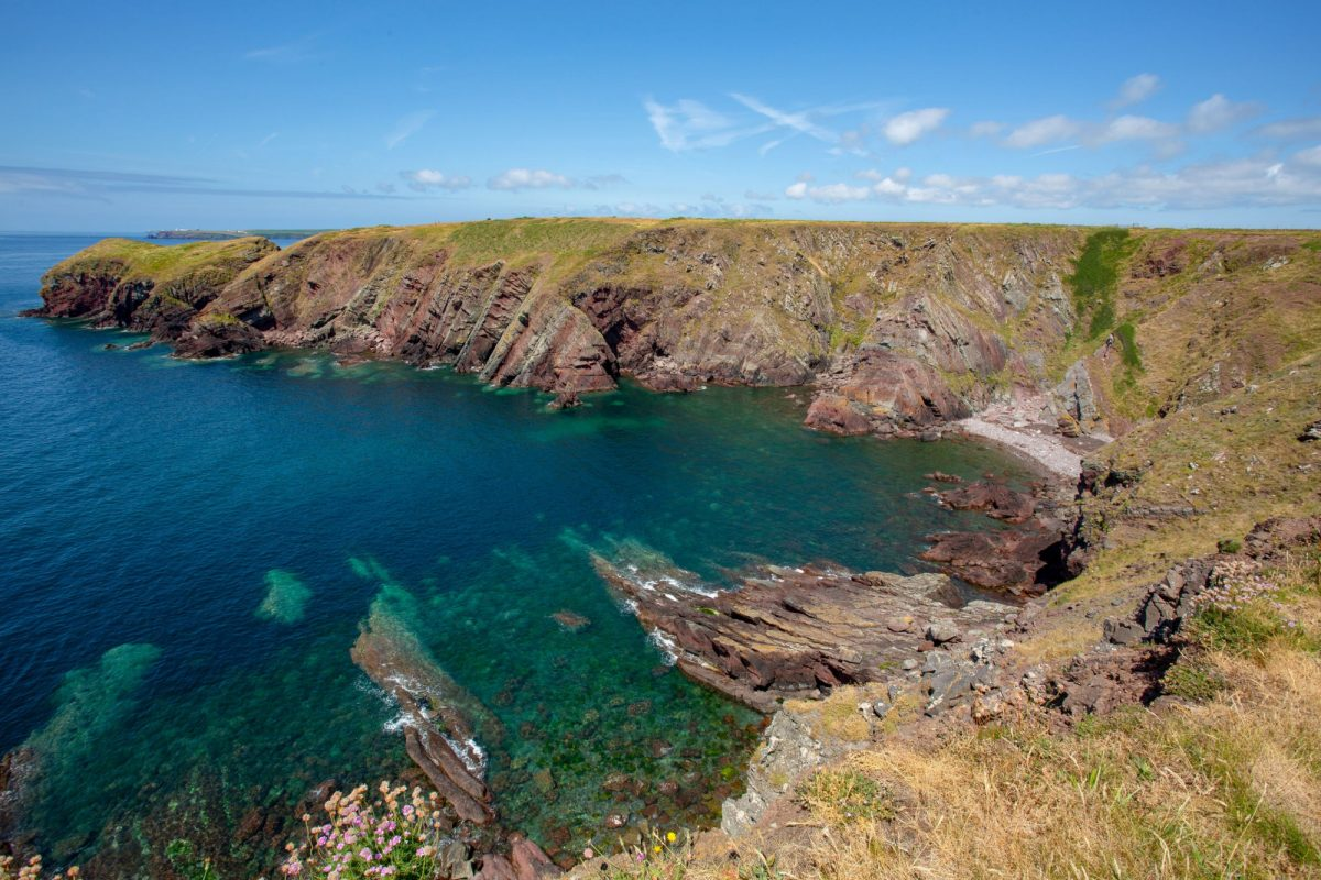 Summer views over Pembrokeshire Coast Path