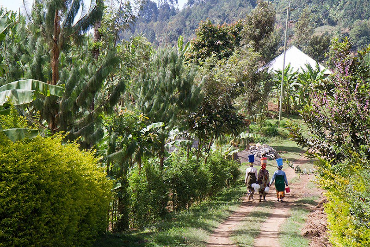 Tanzania near Arusha