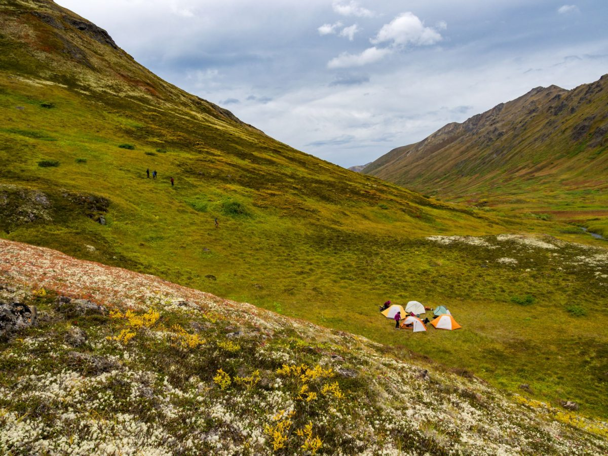 Tents in the Tundra Mountain Valley Campsite Chugach State Park USA