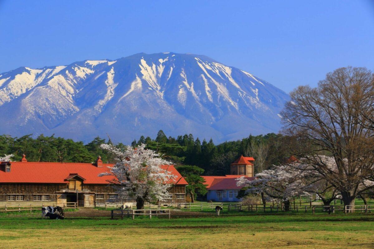Tohoku Iwate volcano and farm