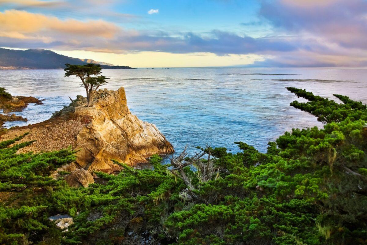 USA Monterey2