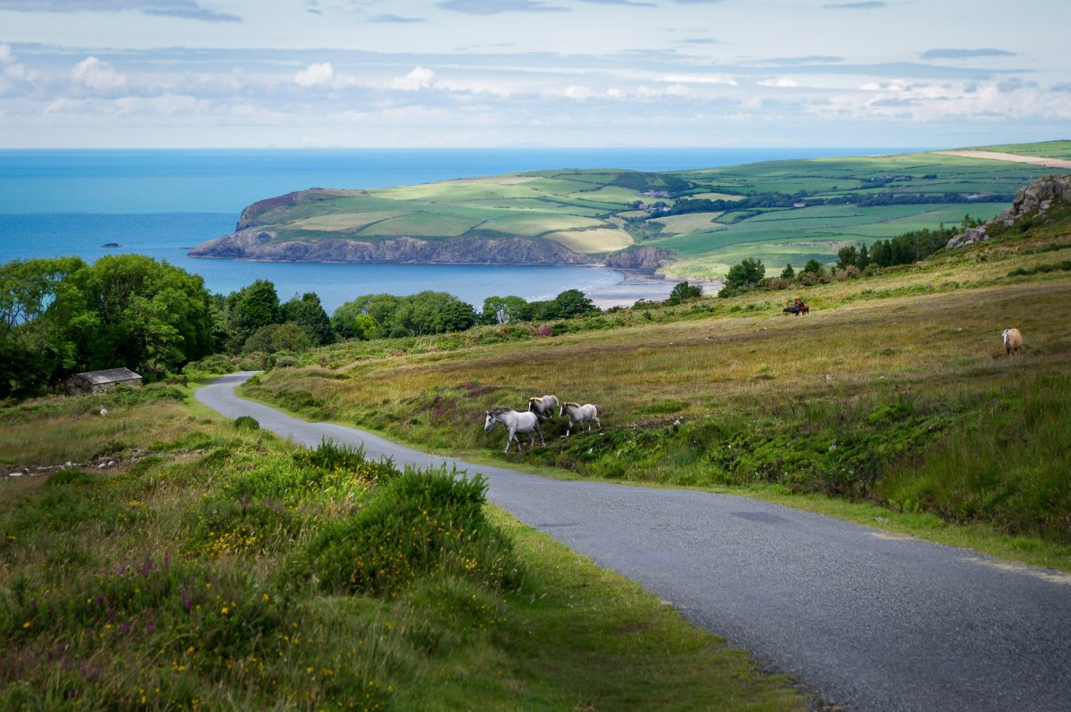 Wales UK Preseli Hills Pembrokeshire