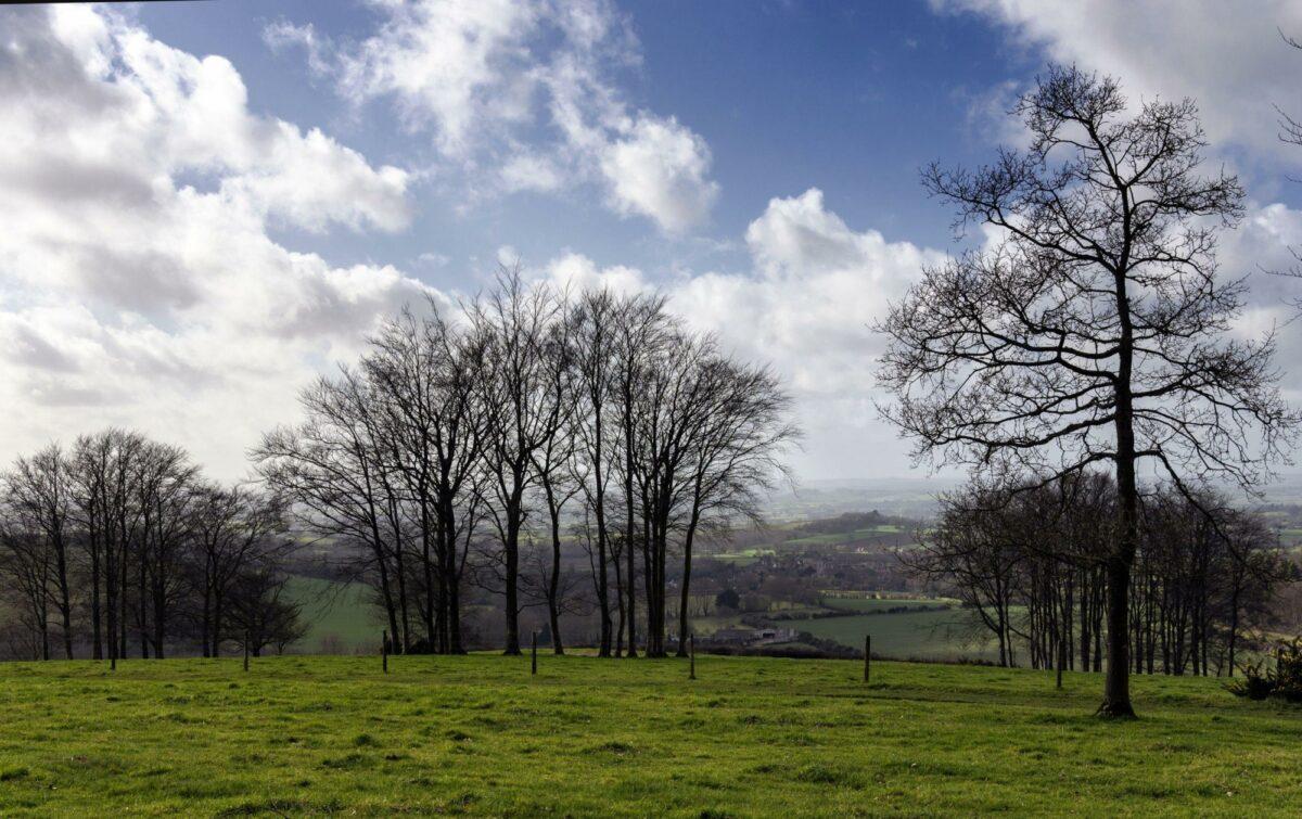 Rolling hills of Cranborne Chase in Dorset UK