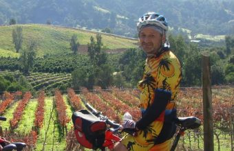Bike and wine tour