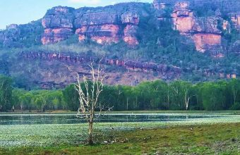 Colours of Kakadu