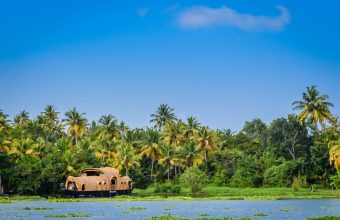 Kerala backwaters and wildlife