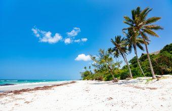 Kenya's coastal hotspots