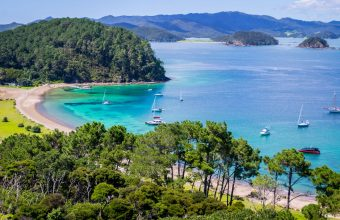 Bay of Islands and South Island escape