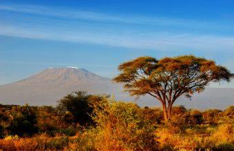 Tanzanian safaris and climbing Kilimanjaro