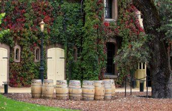 Wine lovers' California