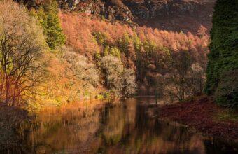 Lon Las Cymru Mid Wales