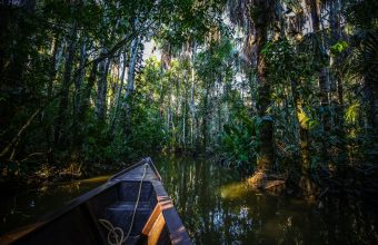 Iguazu Falls & Andean Highlights