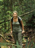 Conserving the orangutans