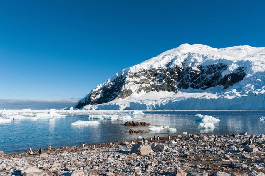 030 Antarctica Paradise Bay