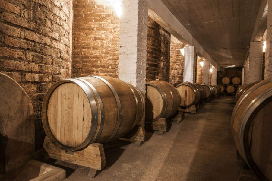 Argentina Mendoza winecellar