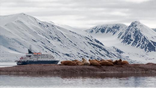 South Shetland & Antarctic Peninsula
