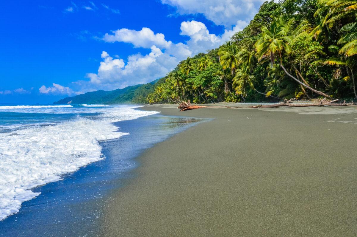 Costa-Rica_Corcovado