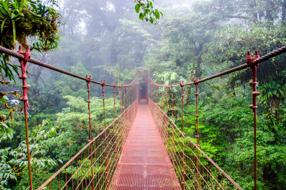 Costa-Rica_Monteverde