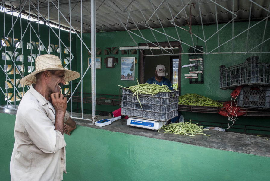 026-Odonnell_Cuba_Bayamo_Farm_Food