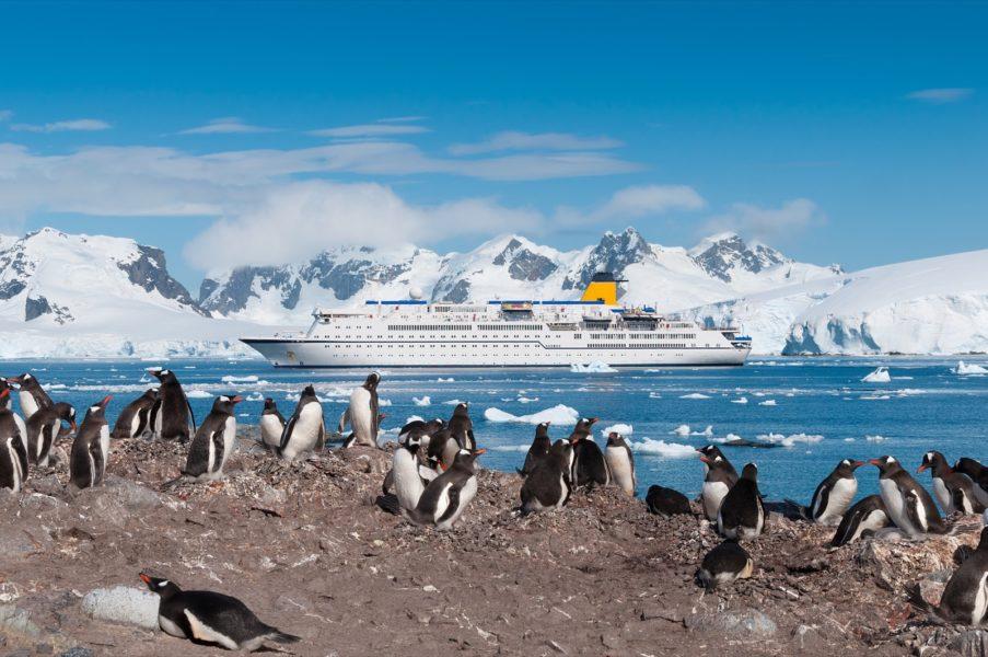 030-Antarctica-123Rf-27123397_Xl