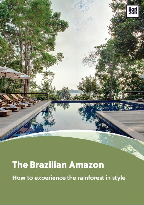 The Brazilian Amazon