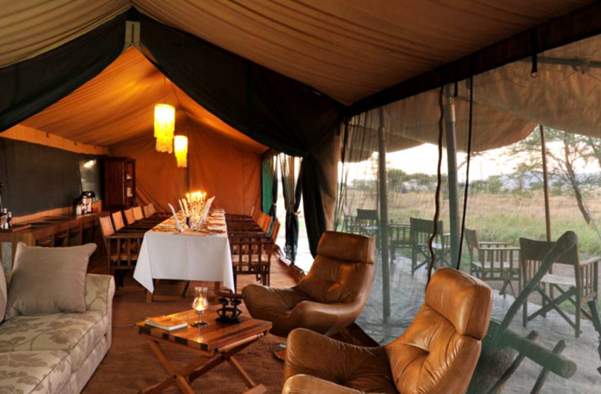Luxury Serengeti & Crater Safari