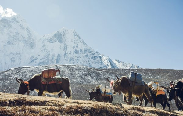 Everest region