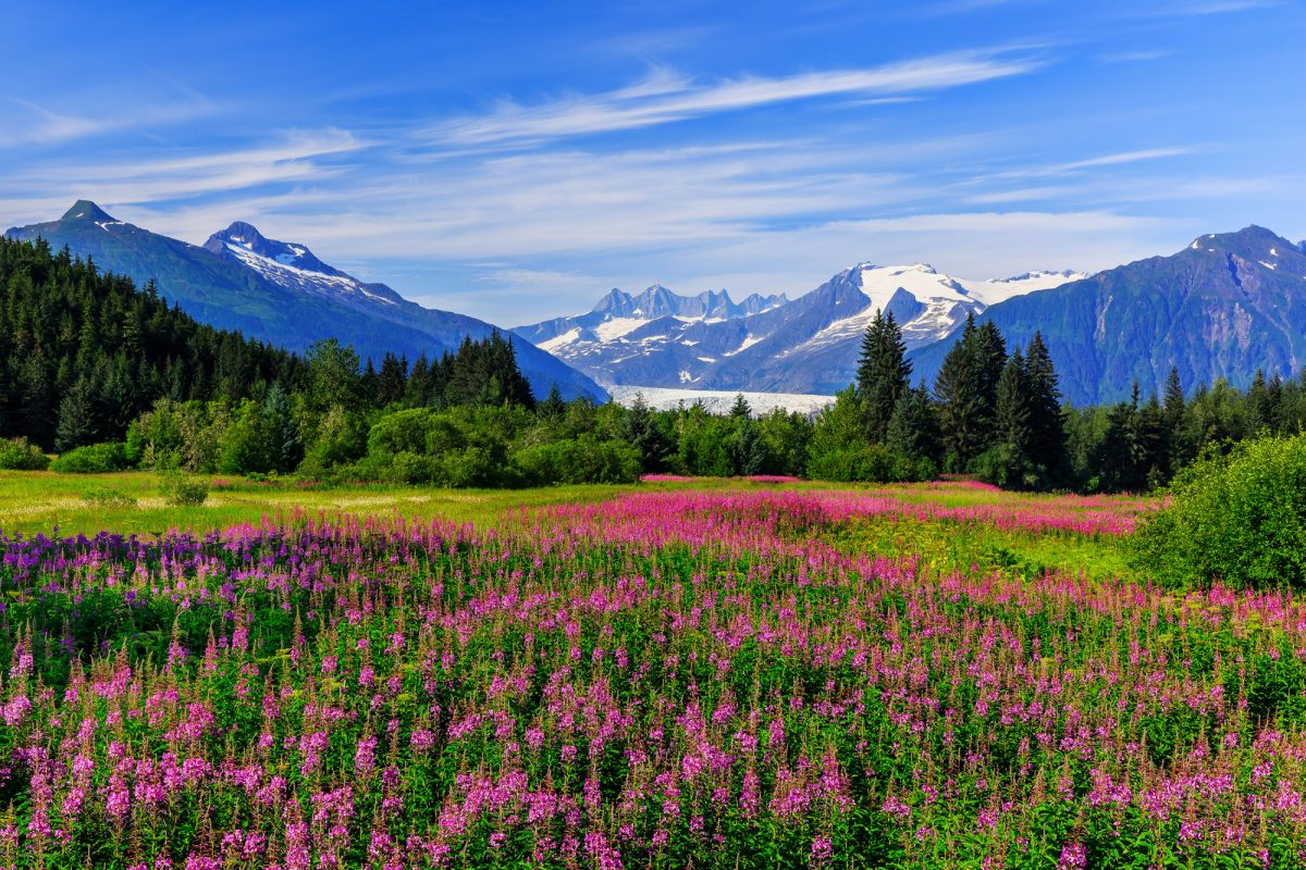 015_Alaska_Juneau_lowres