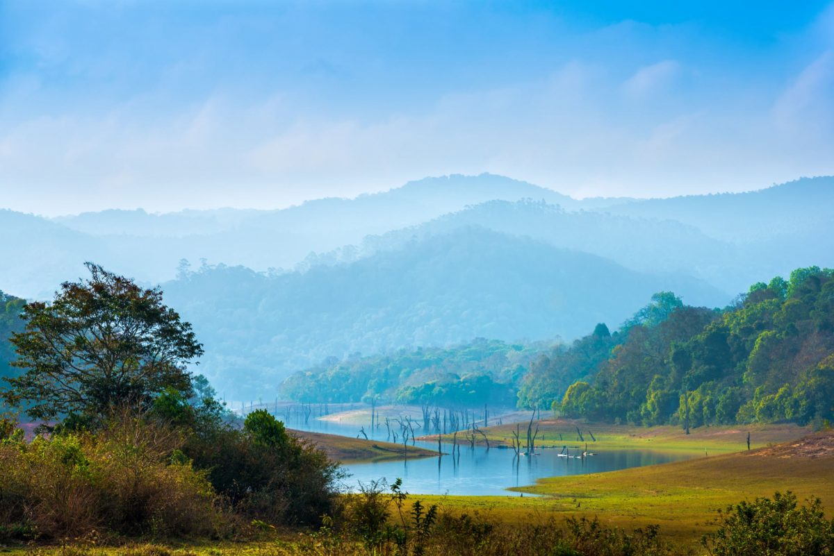 India Periyar National Park