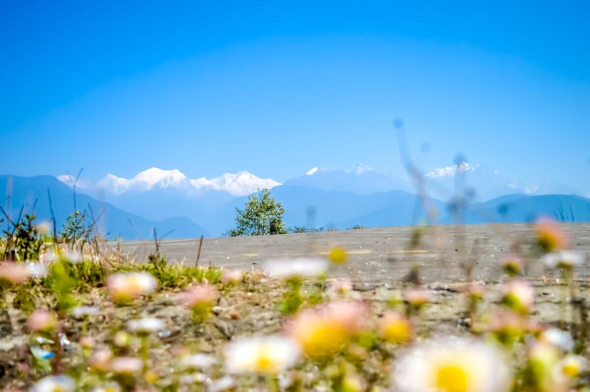 Kanchenjunga view 2