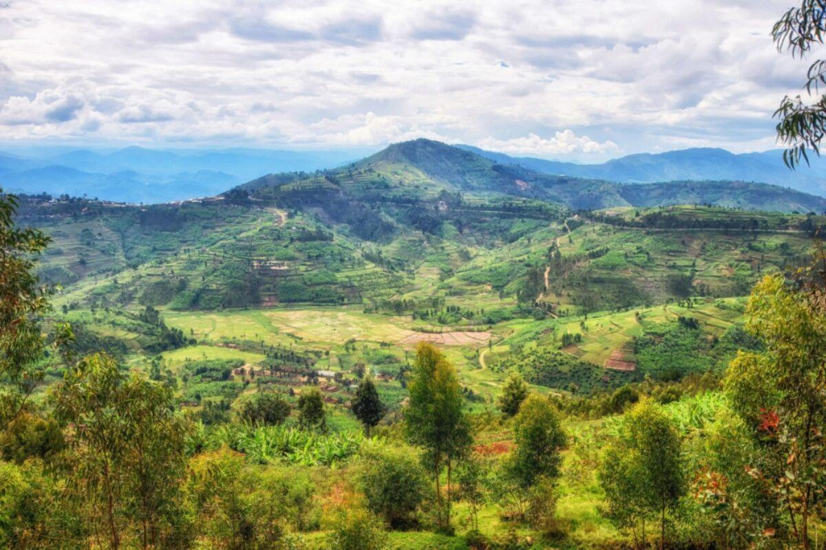 Rwanda Ngungwe landsacpe