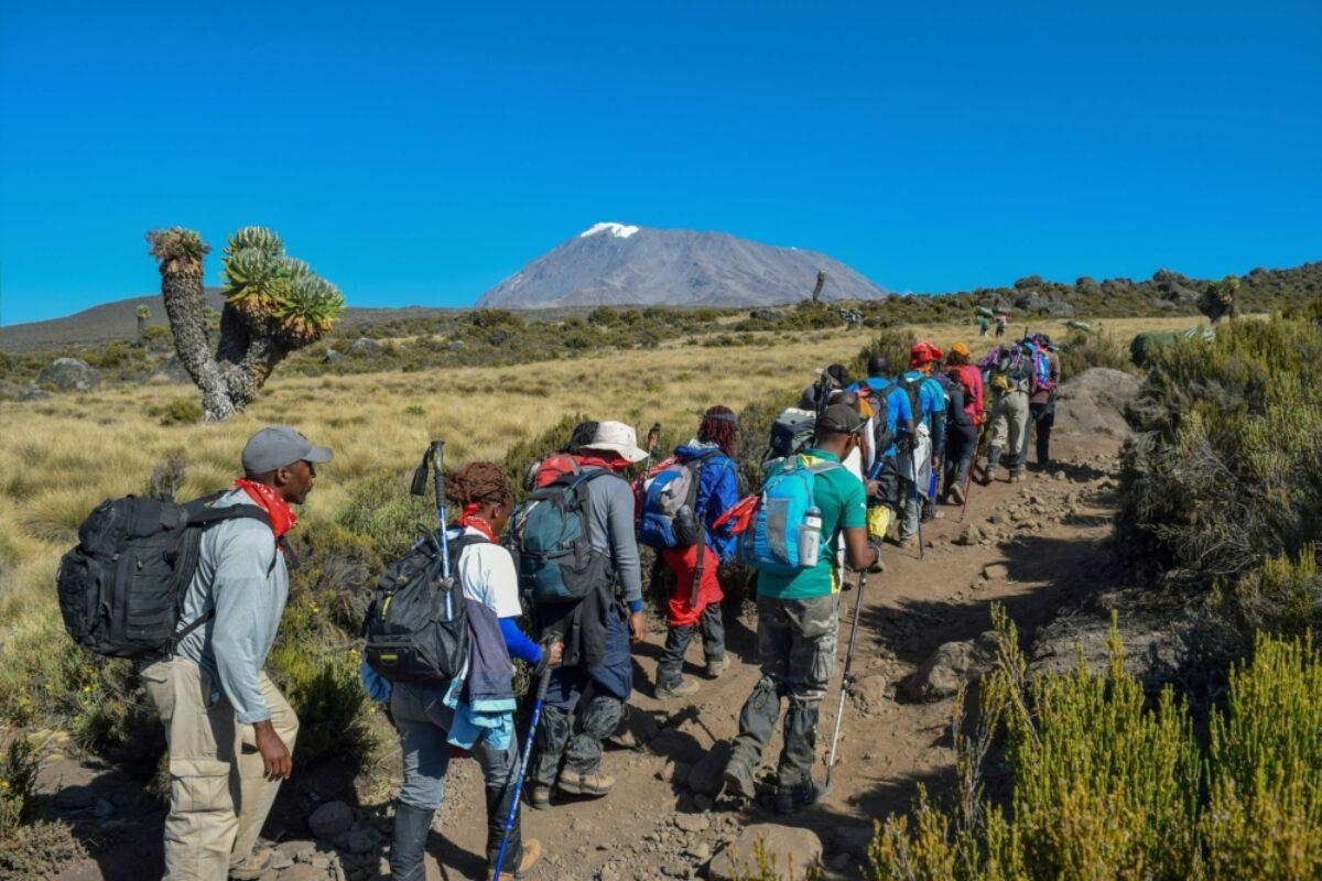 Tanzania Kilimanjaro hiking3