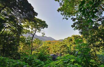 Uganda and Rwanda Scheduled Safari