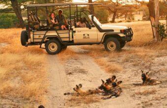 Family Tanzania Adventure Plus