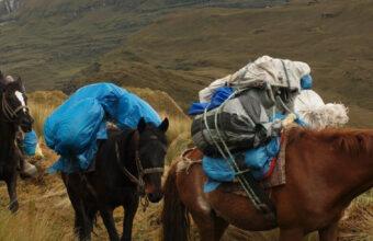 Northern Peru Horseback Riding Trek