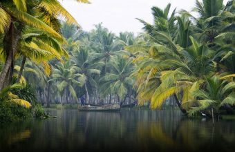 Kerala's Backwaters & Beaches