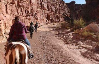 Utah Horseback Inn to Inn