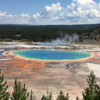 Yellowstone Adventure Tours