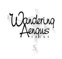 Wandering Aengus