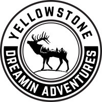 Yellowstone Dreamin Adventures