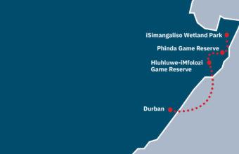 Hluhluwe-iMfolozi and Phinda Game Reserve