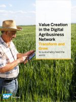 Value Creation in the Digital Agribusiness Network