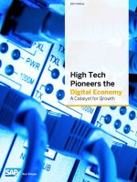 High Tech Pioneers the Digital Economy
