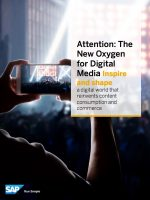 The New Oxygen for Digital Media