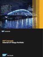 SAP Leonardo: Internet of Things