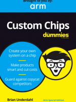 Custom Chips For Dummies