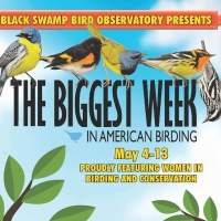 Biggest Week in Birding