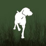 Ugly Dog Hunting