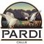 Pardi Duck Calls