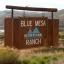 Blue Mesa Recreational Ranch